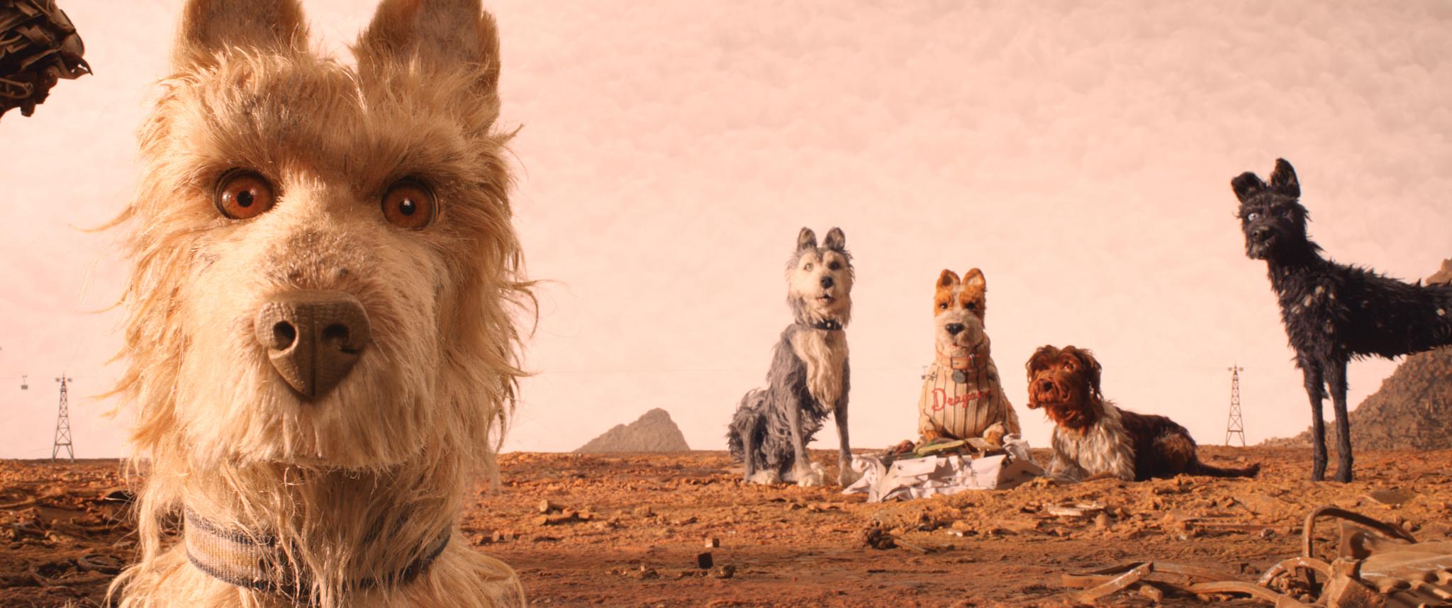 Berlinale 2018 – Hunde, wollt ihr ewig leben?